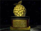 «Золотая малина» объявила победителей