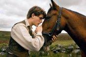 «Боевой конь» Стивена Спилберга выйдет 28 декабря