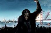 Картина «Восстание обезьян» заслужила похвалы критиков