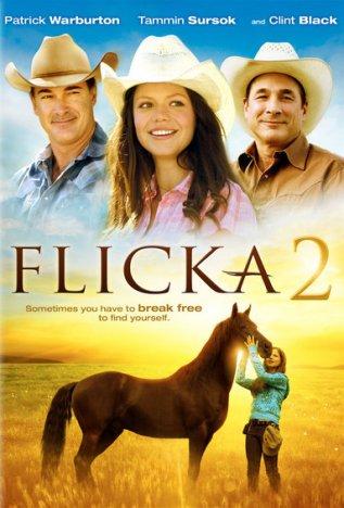 Постер к фильму Флика 2